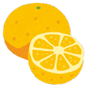 fruit_grapefruit2.pngグレープフルーツ