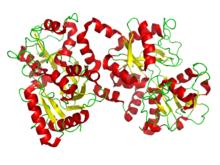 220px-Lactoferrin.pngヒトラクトフェリン