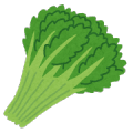 vegetable_syungiku.png春菊
