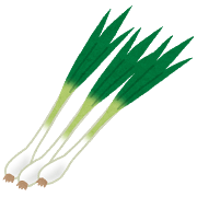 vegetable_wakegi-png%e3%83%8d%e3%82%ae