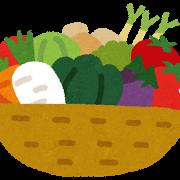 vegetable野菜