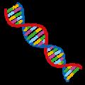 dna 遺伝子