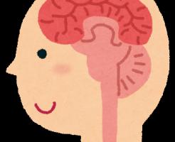 body_nou.png脳