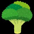 broccoli.pngブロッコリー