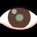 eye_hakunaisyou-png%e7%99%bd%e5%86%85%e9%9a%9c%e3%81%ae%e7%9b%ae