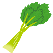 vegetable_celeryセロリ