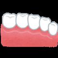 teeth_ceramic歯